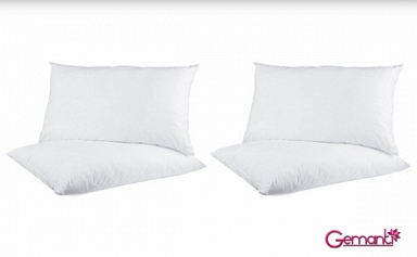 Gemanti Pack 2 Almohadas Queen House a s�lo $349